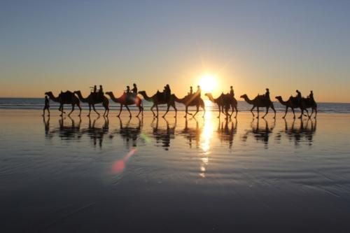 agadir camel ride